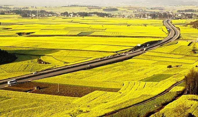 chuyển đất ở sang đất phi nông nghiệp không phải là đất ở cũng không cần xin phép