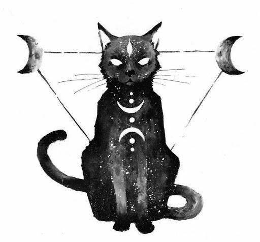 Mơ thấy mèo đen đẻ con đánh con gì