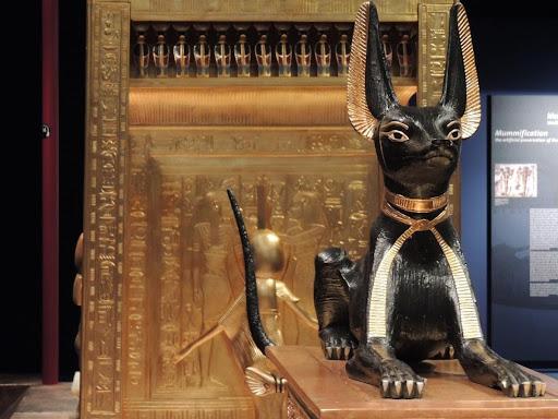 Hình ảnh mèo đen trong văn hóa Ai Cập