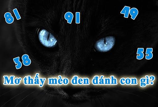 Khi mơ thấy mèo đen đánh con gì?